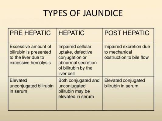 জন্ডিসের ধরন - Types Of Jaundice