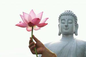 Budha purnima
