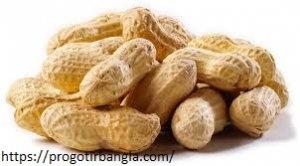 চিনা বাদাম - Peanuts
