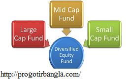 বৈচিত্র ইক্যুইটি ফান্ড (Diversified Equity Fund)