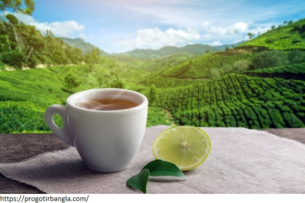 cup-hot-brown-tea-with-piece-lemon-background-plantations_97716-234