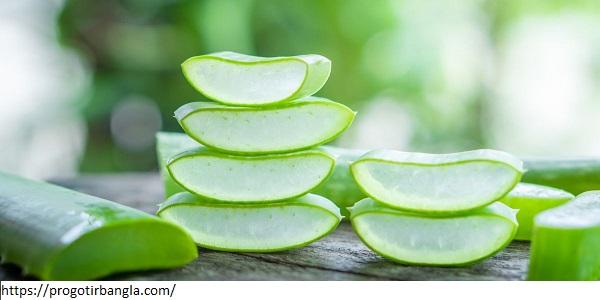 অ্যালোভেরা জেল (Aloe vera gel)