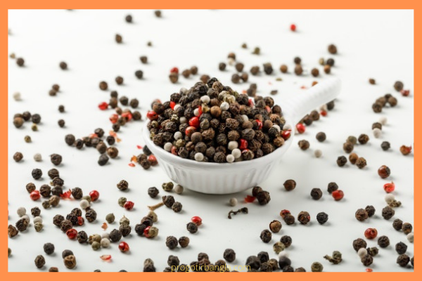 গোলমরিচ (Black Pepper)