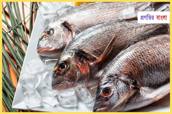 সামুদ্রিক মাছঃ